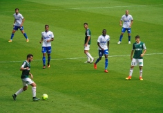 Red Star vs. Auxerre 2016-17 (61)